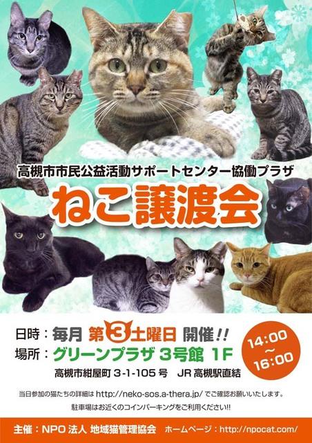 高槻譲渡会チラシ_2017.jpg